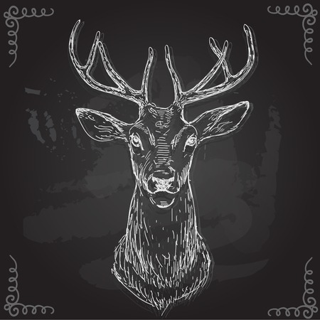 vector - Deer - hand draw , isolated on background. 일러스트