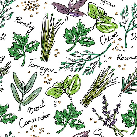 Seamless Pattern Herbs set, vector hand drawn illustration. Vectores