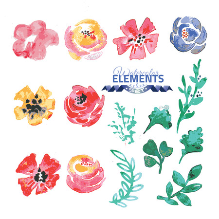 creator: Watercolor floral wreath creator. Set of hand drawn  plants, berries, leaves and flowers for design various combinations. You can create your own compositions using elements. Illustration
