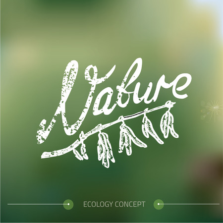 nature vector: Nature color background. Vector illustration.