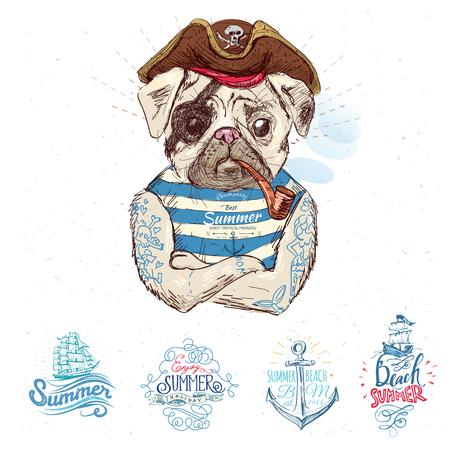 admiral: Illustration of pirate pug dog Illustration