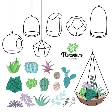 Vector glass terrariums with beautiful succulents set Illustration
