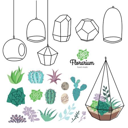 Vector glass terrariums with beautiful succulents set Vectores