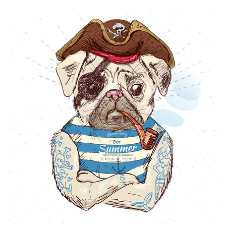 Illustration of pirate pug dog .on blue background 版權商用圖片