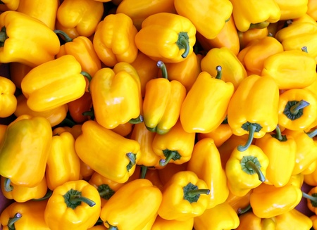 Agricultural background, a yellow bell pepper Bulgarian Stock Photo - 12519514
