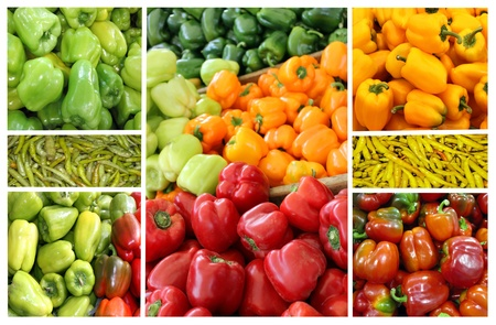 Collage of colored peppers of different varieties photo