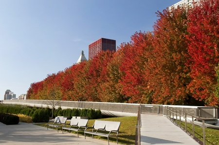 view of the autumn park in Chicago Stock Photo - 12765665