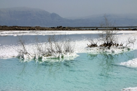 white salt deposits in the Dead Sea in Israel Stock Photo - 12807104