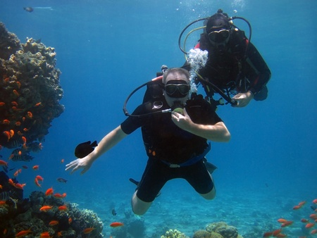 two adult scuba divers in the Red Sea Stock Photo - 12790488