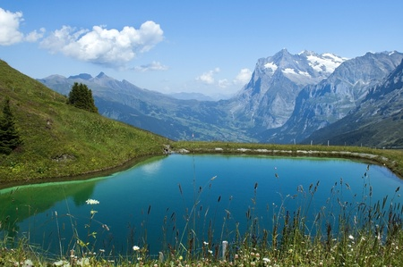 artificial lake in the Swiss Alps Stok Fotoğraf