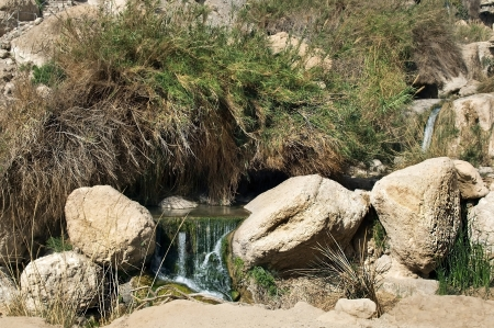 ein: source of mineral water of Ein Gedi, near the Dead Sea, Israel Stock Photo