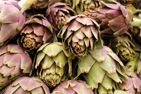 Agricultural background, freshly artichoke Stock Photo - 13801863