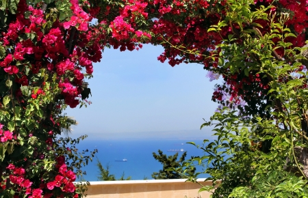 views of the Mediterranean Sea through the arch of red bougainvillea