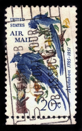 UNITED STATES - CIRCA 1963  A stamp printed in United states, shows Columbia Jays, John James Audubon, circa 1963 Stock Photo - 14720187