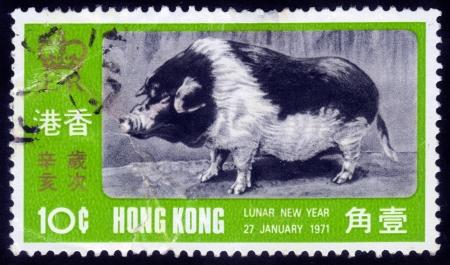 HONG KONG - CIRCA 1971  A stamp printed in the Hong Kong dedicated to the Chinese New Year, shows a wild boar, circa 1971 Stock Photo - 14849085