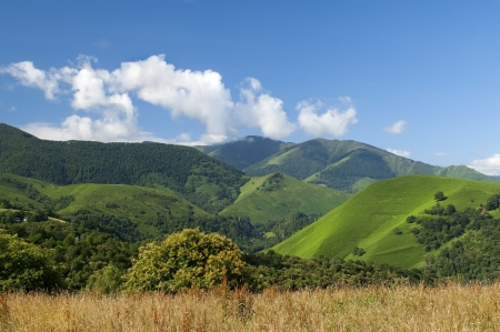 beautiful landscape with green mountain meadows in the French Pyrenees Stock Photo - 14898424