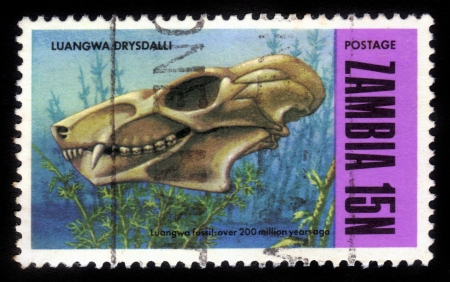 ZAMBIA - CIRCA 1973: A stamp printed in Zambia, shows fossils from Luangwa River Valley, circa 1973 Stock Photo - 16007406