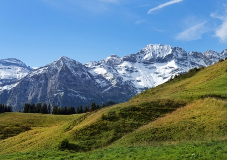 beautiful landscape , snowy peaks and green meadows in the Swiss Alps Stock Photo - 16126219