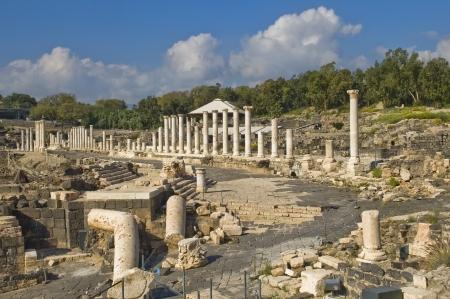 columnas romanas: antiguas columnas romanas en el sitio arqueol�gico, Beit Shean, Israel