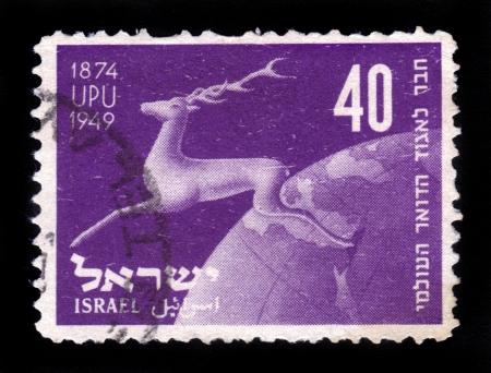Israel deer Stock Photo - 16591772