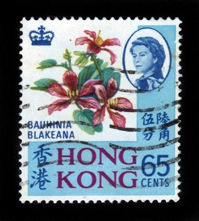 orchid tree: HONG KONG - CIRCA 1968 sello impreso por Hong Kong, muestra portait de la reina Isabel II en el fondo de Hong Kong Orchid Tree bauhinia blakeana, alrededor de 1968 Editorial