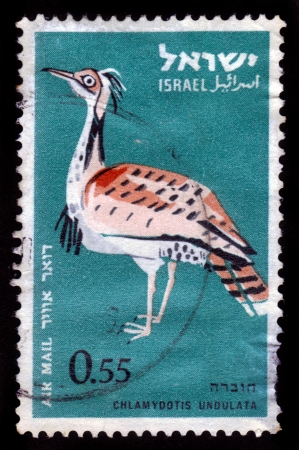 ISRAEL - CIRCA 1963  A stamp printed in Israel shows large bird, Houbara Bustard  Chlamydotis undulata  , circa 1963 Stock Photo - 16878668