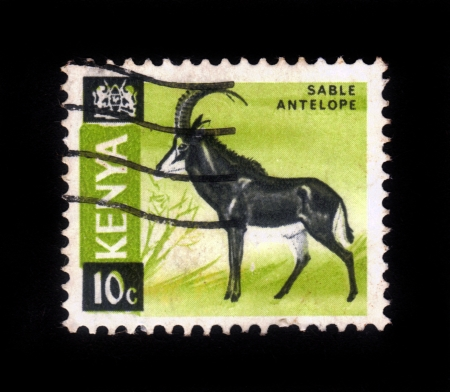 KENYA - CIRCA 1964: A stamp printed in Kenya shows Sable antelope, circa 1964 Stock Photo - 16944384