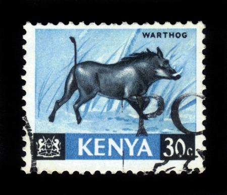 KENYA - CIRCA 1964  A stamp printed in Kenya shows warthog, circa 1964  Stock Photo - 16944382