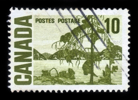 mount tom: CANADA - CIRCA 1967  A stamp printed by Canada, shows painting   The Jack Pine   by T  Thomson, circa 1967 Stock Photo