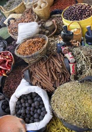 Spices and herbs , food and cuisine ingredients , colorful natural additives Stock Photo - 16978124