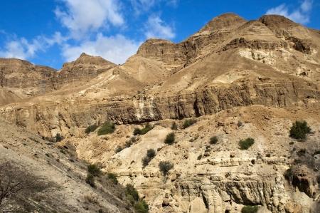 judean hills: beautiful landscape in the Judean Hills, in a neighborhood the Dead Sea, Israel