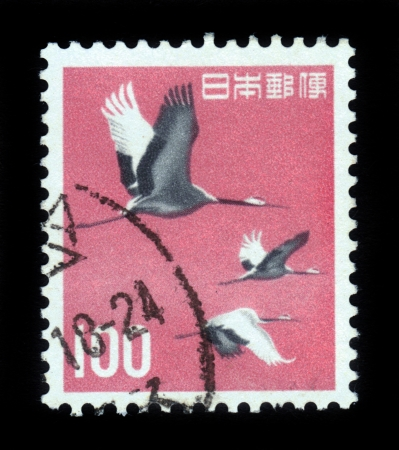 JAPAN - CIRCA 1963 A post stamp printed in Japan and shows japanese  manchurian  cranes, red-crowned crane  grus japonensis , flight of birds, circa 1963 Stock Photo - 17019584