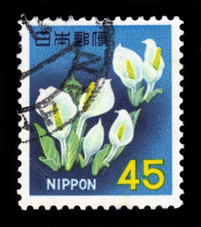 JAPAN - CIRCA 1966  A stamp printed in Japan shows Skunk Cabbage, circa 1966 Stock Photo - 17019583