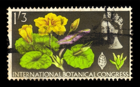 UNITED KINGDOM - CIRCA 1964  A stamp printed in Great Britain dedicates to Botanical Congress , shows Queen Elizabeth II and fringed water lily  Limnanthemum nymphaeoides , circa 1964 Stock Photo - 17113099