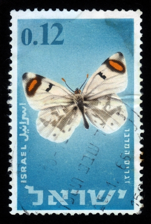 ISRAEL - CIRCA 1965  stamp printed by Israel, shows butterfly Zegris Eupheme Uarda, series  butterflies of Israel , circa 1965 Stock Photo - 17202157