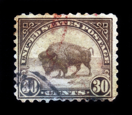 UNITED STATES OF AMERICA - CIRCA 1923  A stamp printed in the United States of America shows American buffalo, circa 1923 Stock Photo - 17326949