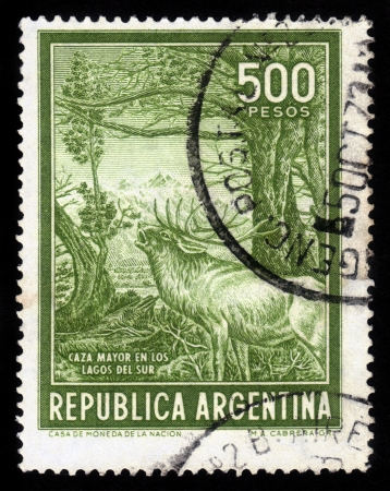 ARGENTINA - CIRCA 1970  A stamp printed in Argentina shows roaring woodland deer in a time of estrus, circa 1970 Stock Photo - 17326958