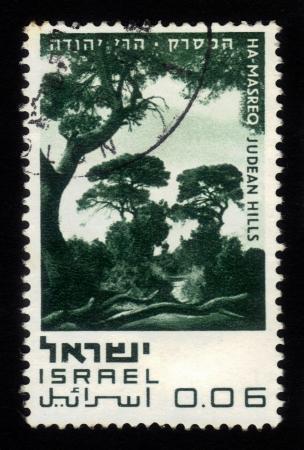 judean hills: ISRAEL - CIRCA 1970  A stamp printed in Israel, shows Ha-Masreq - Judean Hills, series  Nature Reserves of Israel  ; series, circa 1970