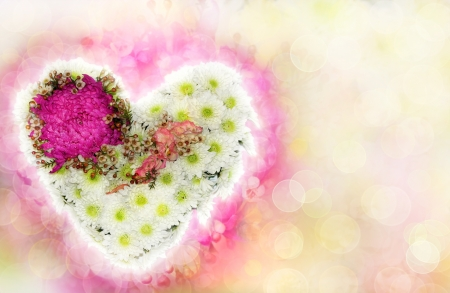 heart of flowers with a blurred background as a Valentine s card Stock Photo - 17334703