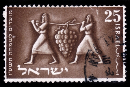 Israel - CIRCA 1954: a stamp printed by Israel ancient Israelites carry a huge bunch of grapes, circa, 1954