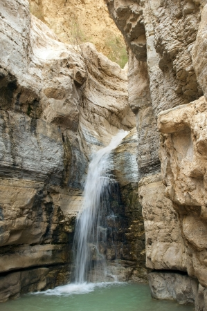 source of mineral water  spring in national park Ein Gedi near the Dead Sea in Israel Stock Photo - 17422931