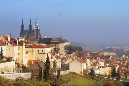 cityscape of Hradcany with St  Vitus Cathedral, old Prague, Czech republic Stock Photo - 17881846