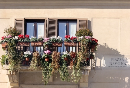 windows twined with flowers on facade of the house on the Piazza Navona, Rome, Italy photo