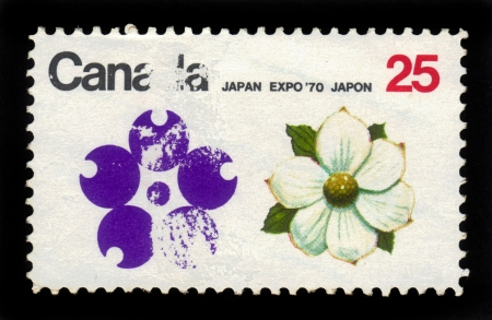 CANADA - CIRCA 1970  stamp printed by Canada, shows flower of dogwood,  circa 1970