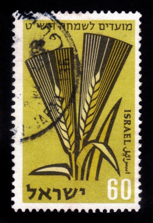 israel agriculture: ISRAEL - CIRCA 1958  A stamp printed in ISRAEL shows ears of barley, one of the