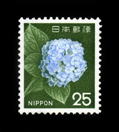 JAPAN -CIRCA 1962 A post stamp printed in Japan and shows image of blossoming japanese flower, circa 1962
