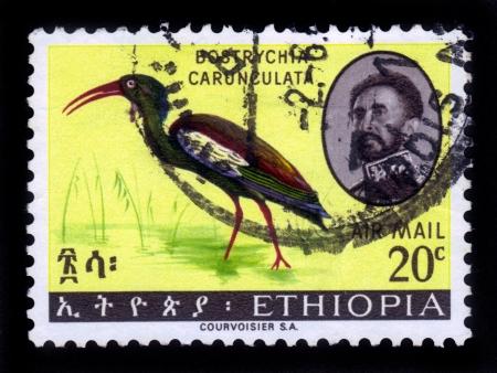 ETHIOPIA - CIRCA 1962 : A stamp printed in Ethiopia shows portrait of emperor Haile Selassie and bird wattled Ibis ( bostrychia carunculata ) , with the inscription in amharic , series, circa 1962 Stock Photo - 18306013