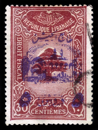 LEBANON - CIRCA 1945: a stamp printed in Lebanon shows Lebanon cedar, with inscription in French : tax law, circa 1945 Stock Photo - 18302908