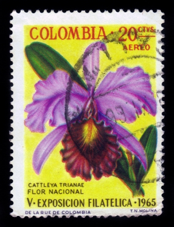postage stamp: COLOMBIA - CIRCA 1965  stamp printed by Colombia, shows flower of orchid, May Flower   Cattleya trianae  , circa 1965