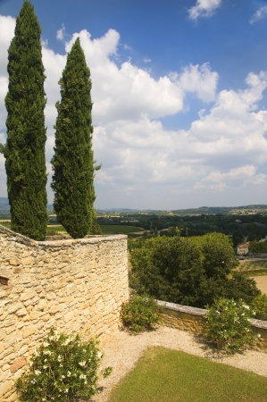 lourmarin: landscape with cypress trees in the region of Luberon, Provence, France